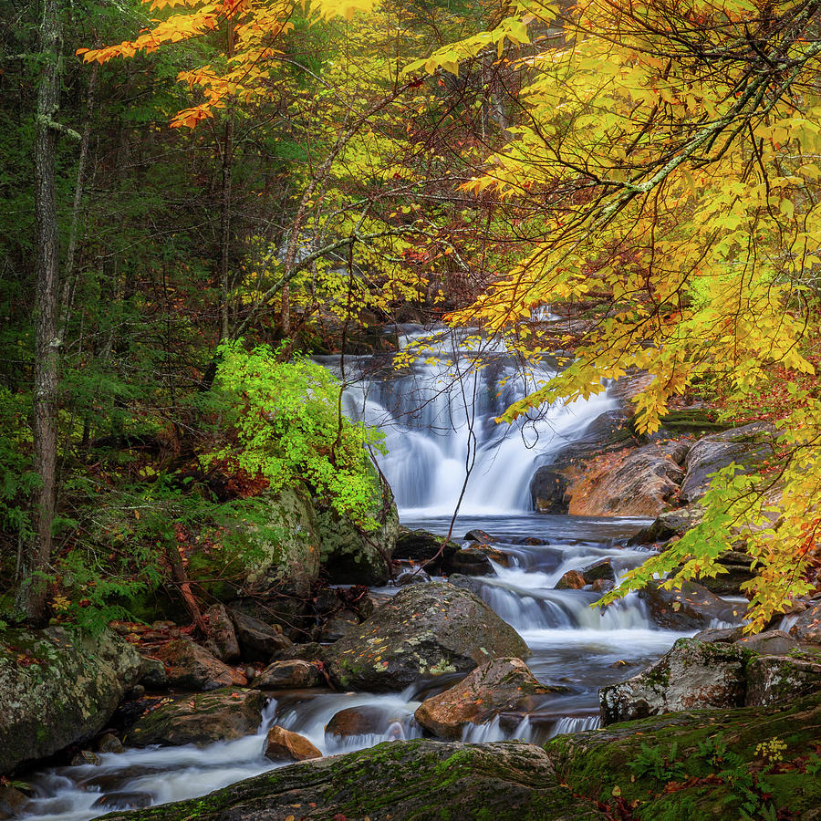 Kent Falls Foliage square by Bill Wakeley