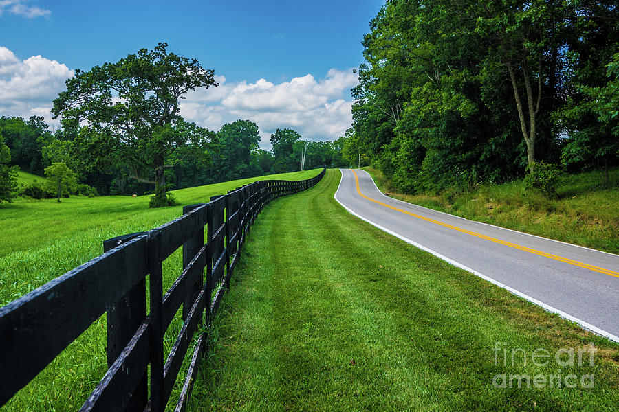 Kentucky Bluegrass Horse Country - Frankfort - Kentucky by Gary Whitton