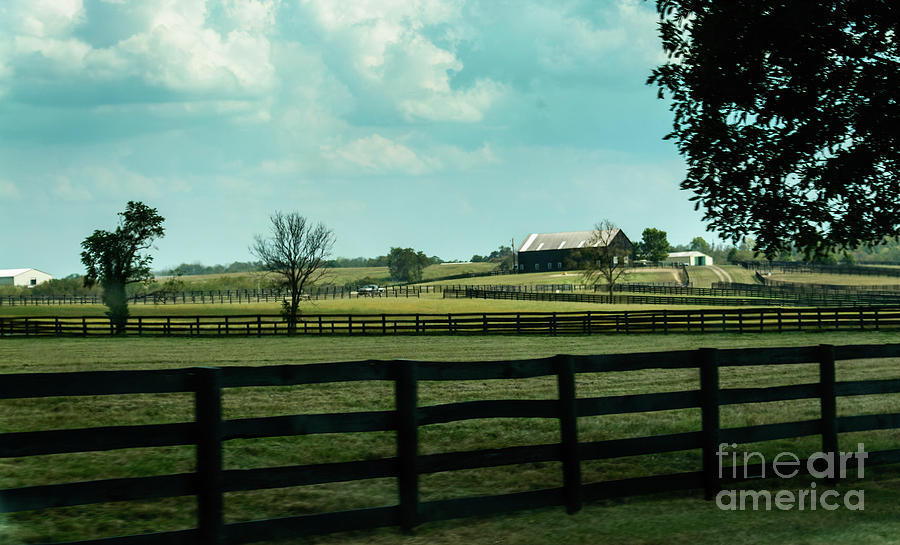 Kentucky Horse Farm by Randy J Heath