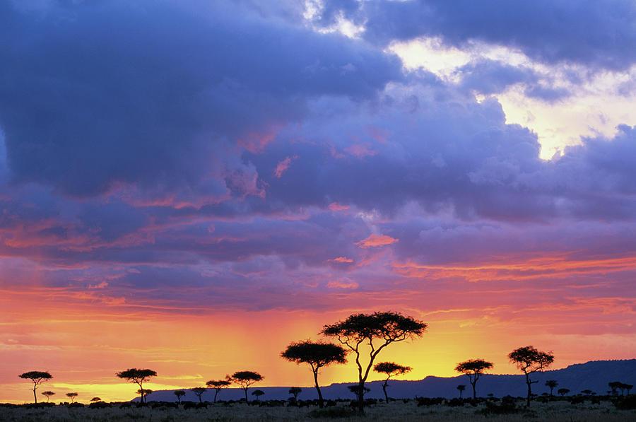 Kenya, Masai Mara Game Reserve, Storm Photograph by Paul Souders