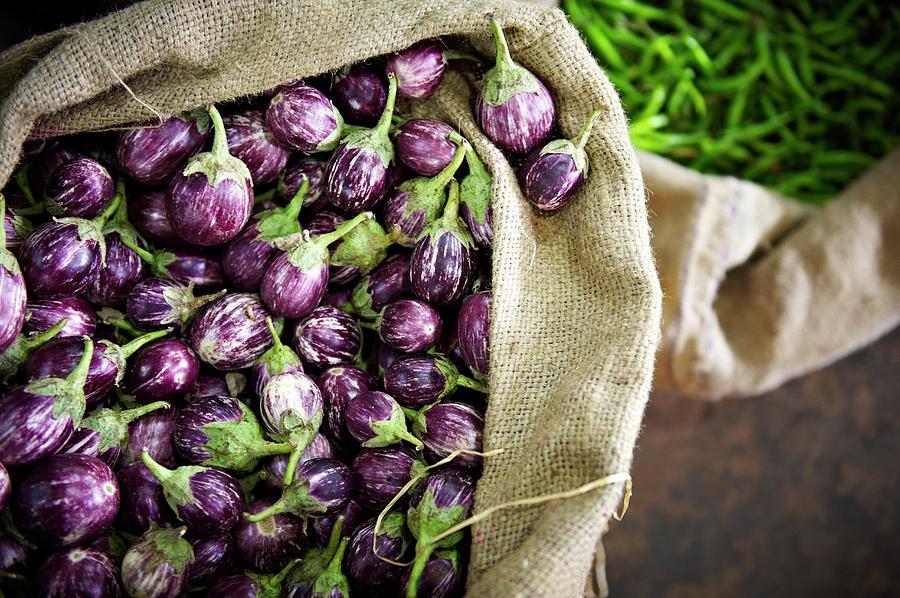 Kerelan Eggplant Photograph by Matthew Leete