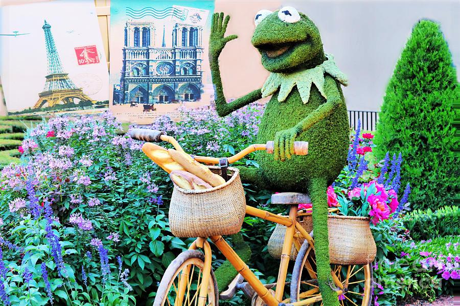 Kermit Bikes Paris Photograph