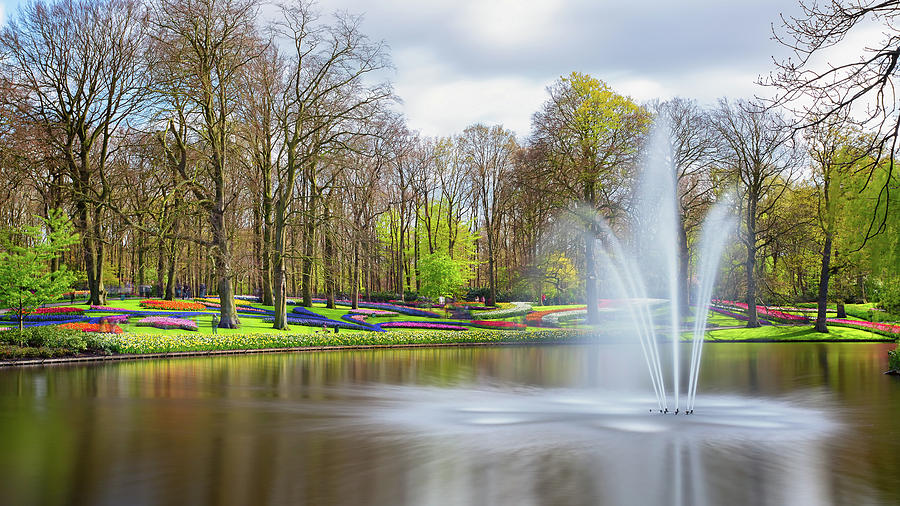 Keukenhof Tulip Garden Holland by Nathan Bush