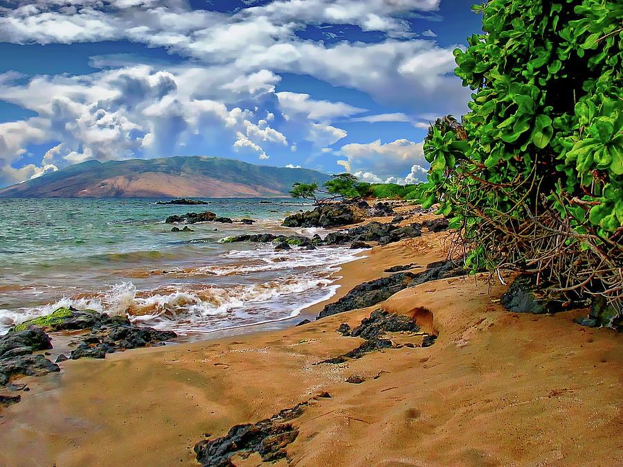 Kihei Beach Seascape by Anthony Dezenzio