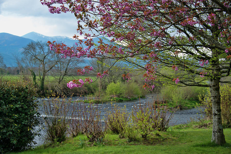 Killarney Ireland by Curt Rush