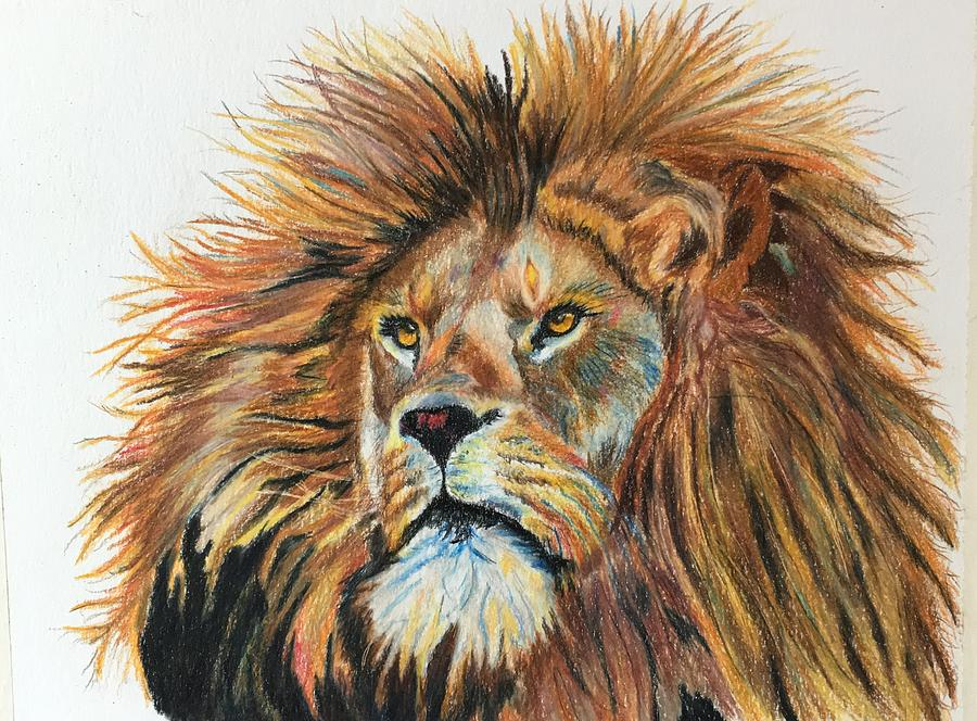 King of the Jungle by Maris Sherwood