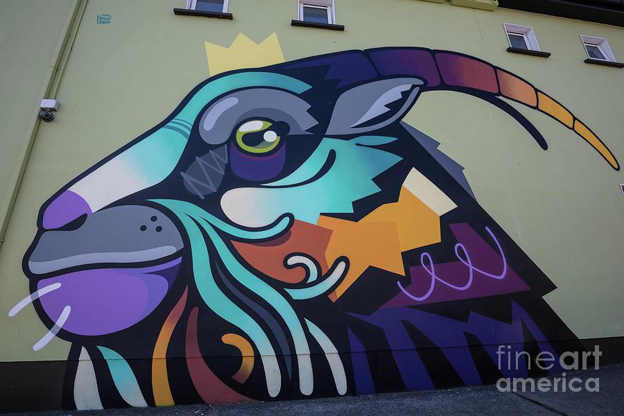 King Puck Street Art by Eva Lechner