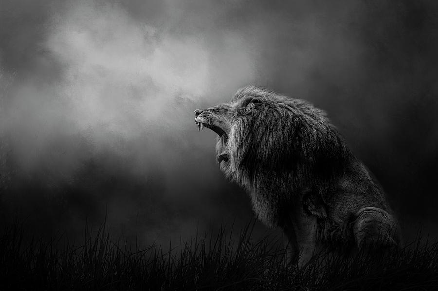 Kingdom Cry by Kelley Parker
