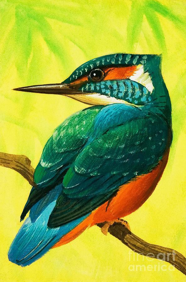 Kingfisher by Bob Hersey