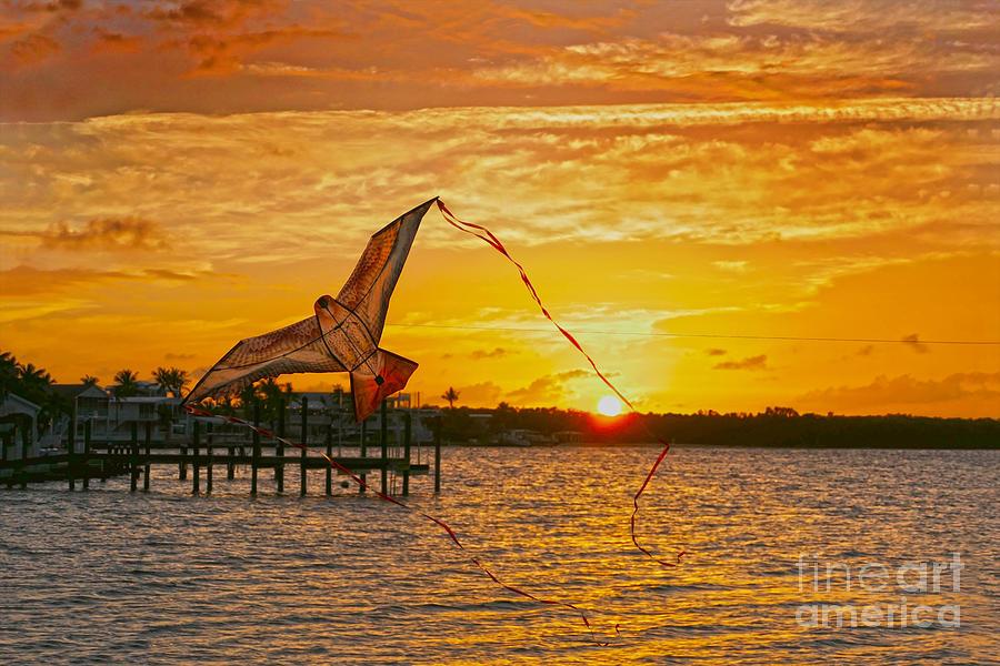 Kite at Key Largo Sunset by Catherine Sherman