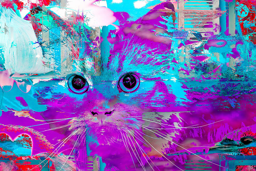Kitty Collage Blue by Don Northup