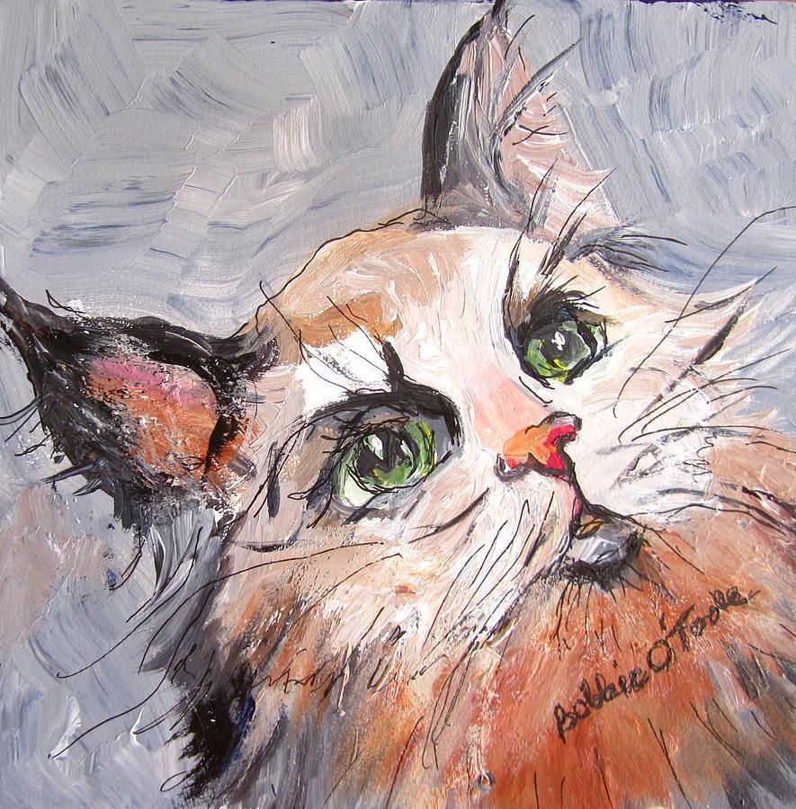 Kittywampuss by Barbara O'Toole