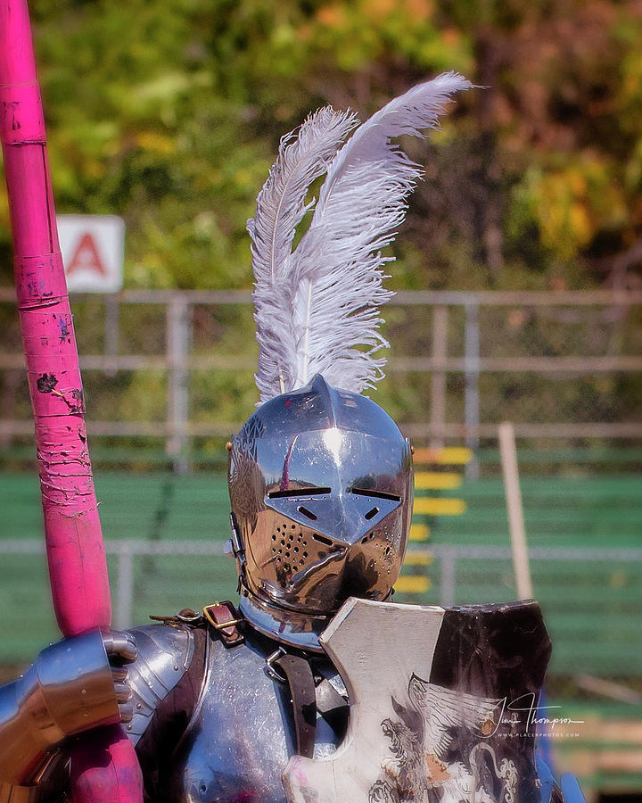 Equine Photograph - Knight 03 by Jim Thompson