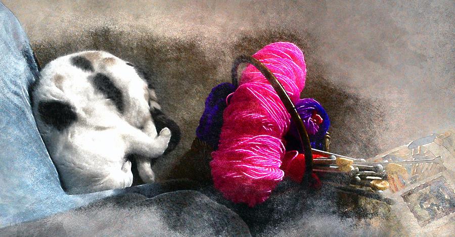 Knit 2, Curl, Purrl 2 by Carmen Hathaway