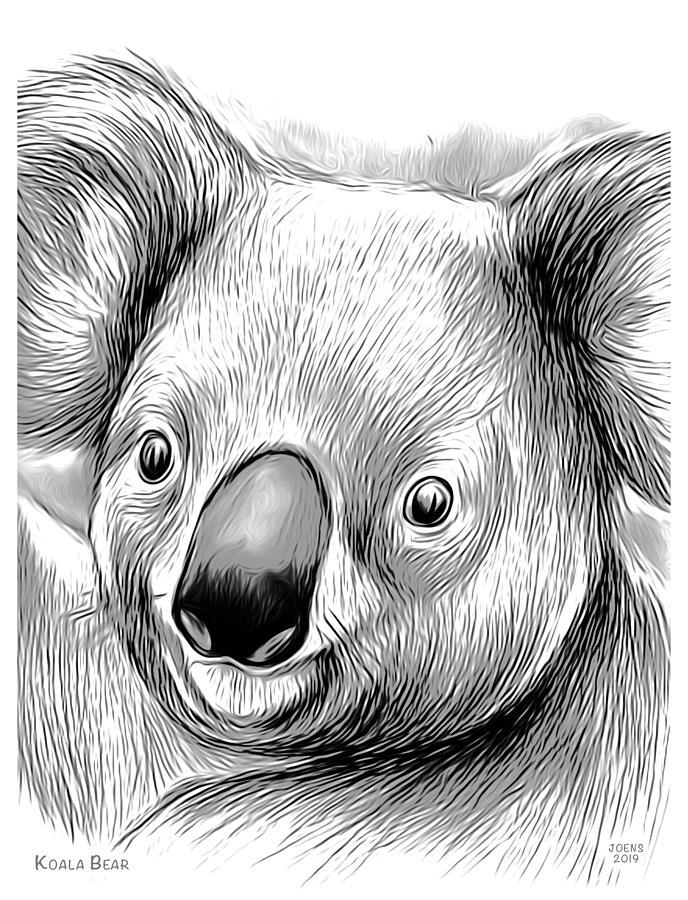 Koala Bear Mixed Media Mixed Media
