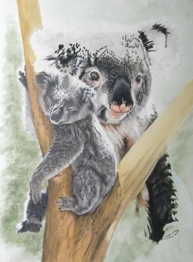 Koala Day 6 by Barbara Keith