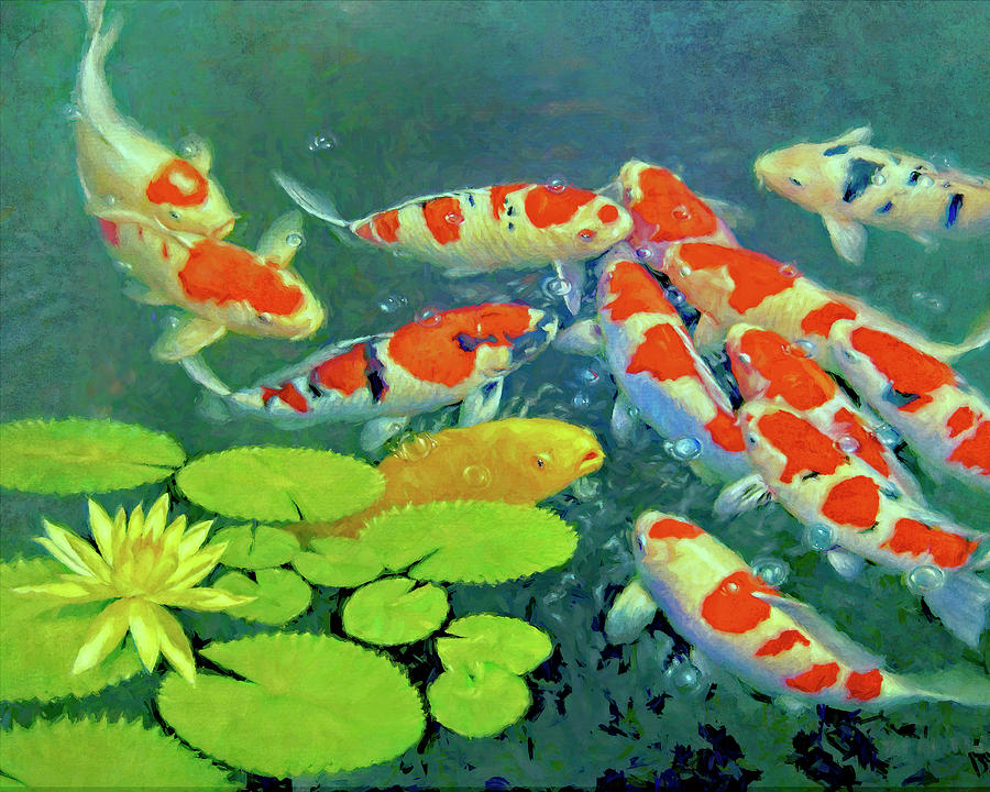 KOI Feeding Frenzy by Sandra Selle Rodriguez