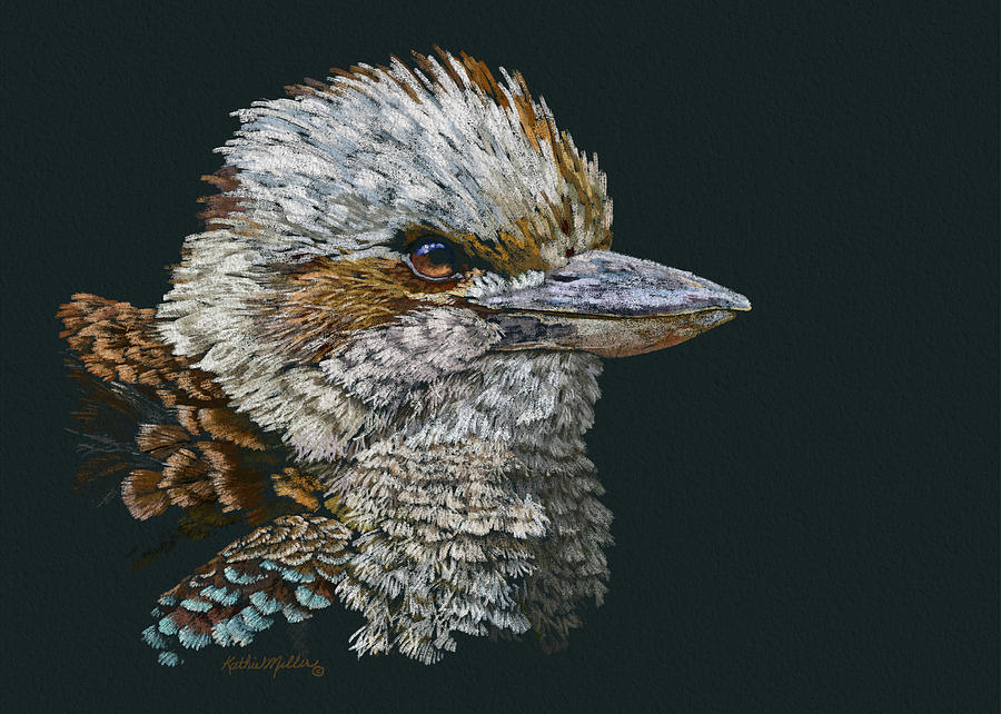 Kookaburra by Kathie Miller