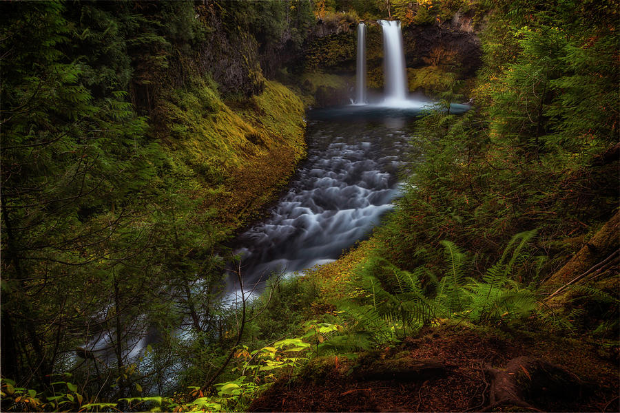Koosah Falls by Cat Connor