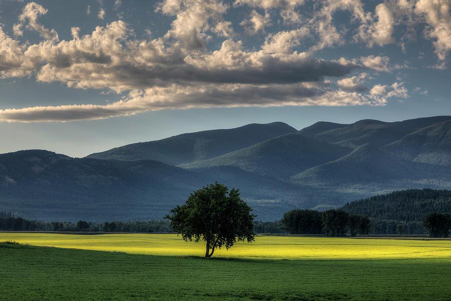 Kootenai Valley Morning by Mark Kiver