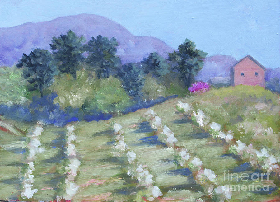 KT's Orchard by Anne Marie Brown