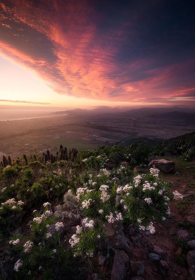 La Serena Sunset Photograph