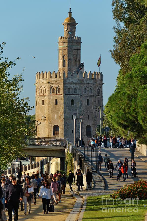 La Torre de Oro in Seville by Angelo DeVal