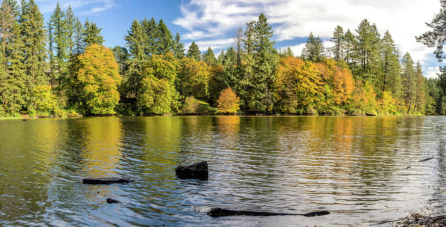 Lacamas lake nature panorama Camas Washington, USA by Panoramic Images