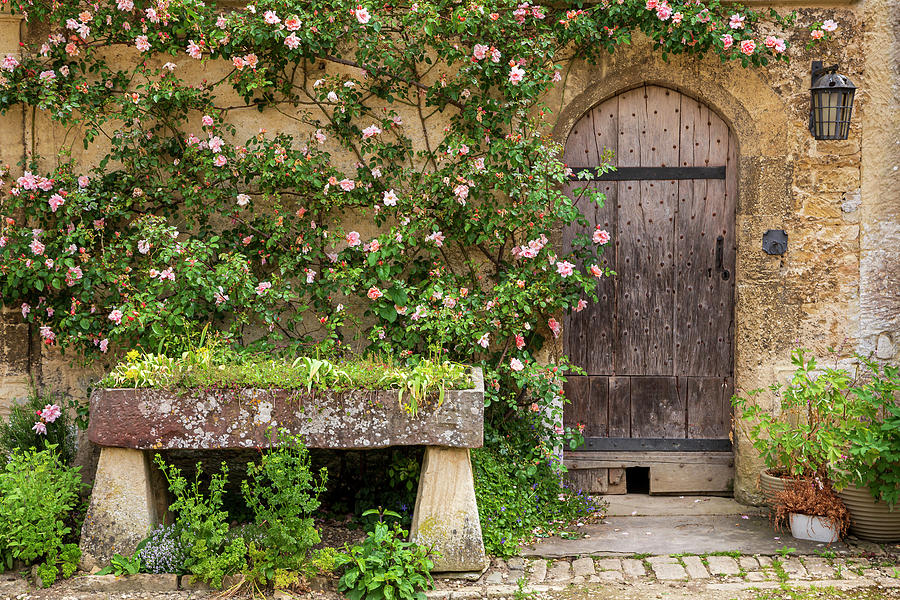 Lacock Abbey Courtyard Door by Adam Romanowicz