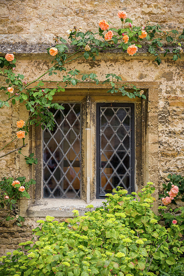 Lacock Abbey Window by Adam Romanowicz