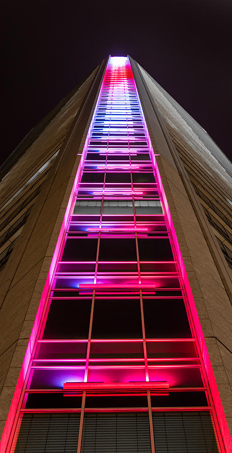 Duke Photograph - Ladder To Heaven  by Christine Buckley
