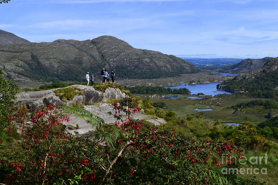Ladies View, Killarney by Joe Cashin