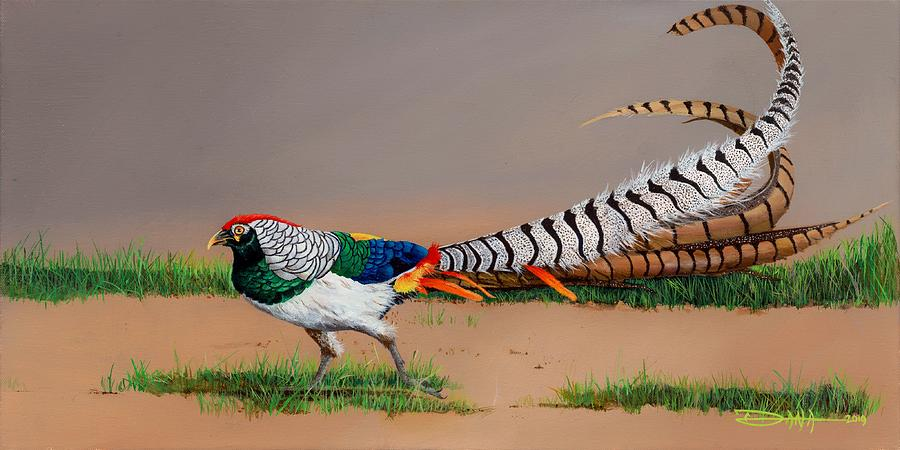 Birds Painting - Lady Amherst Pheasant by Dana Newman