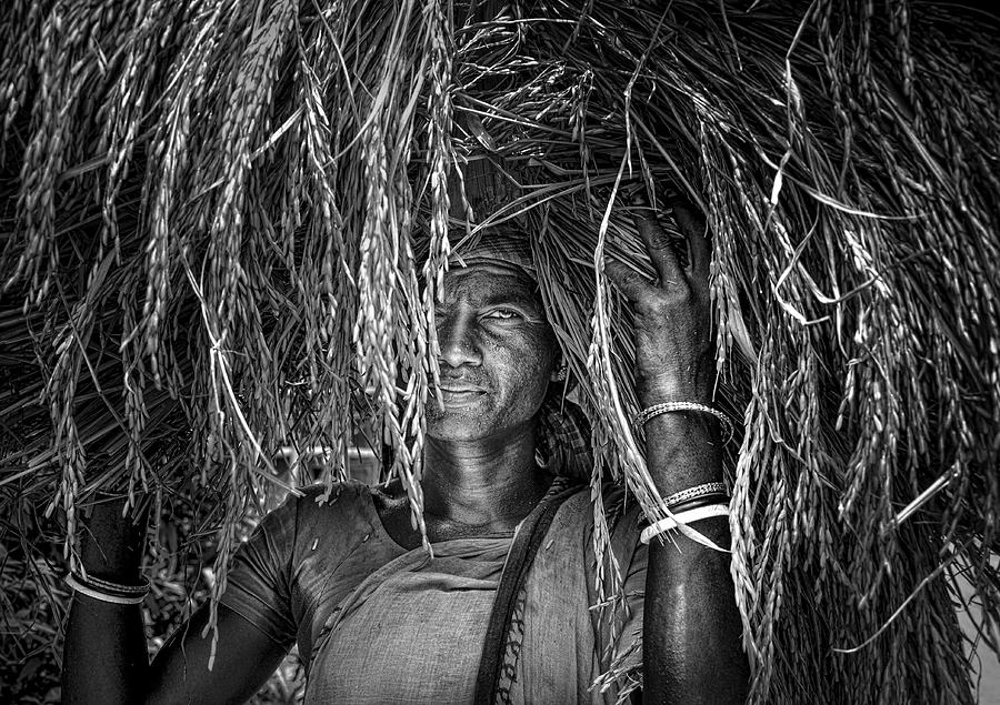 Portrait Photograph - Lady Farmer by Sourav Das