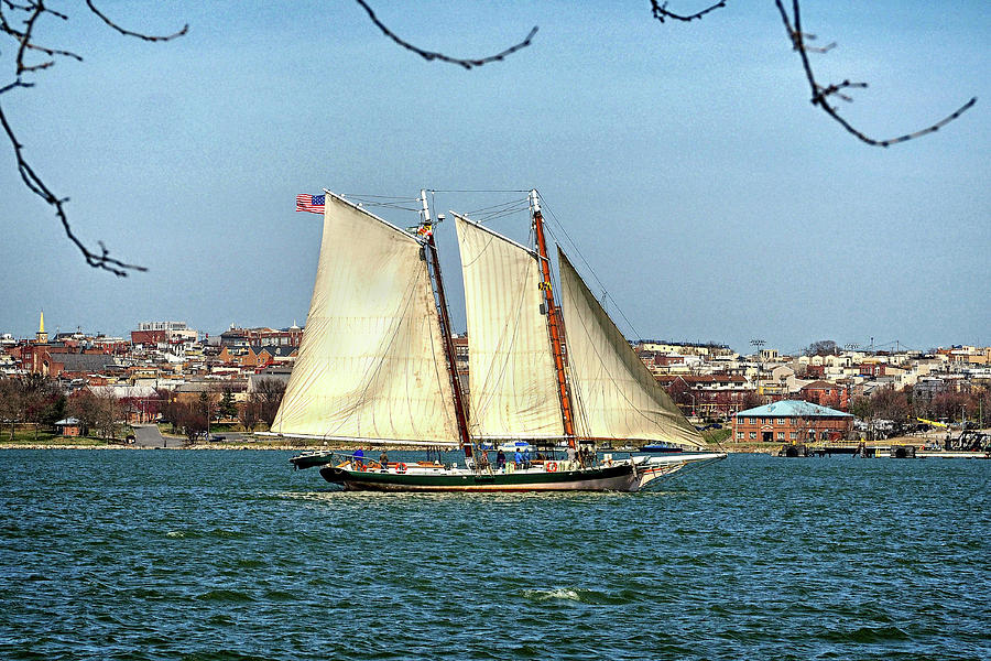 Lady Maryland in Baltimore Harbor by Bill Swartwout Photography