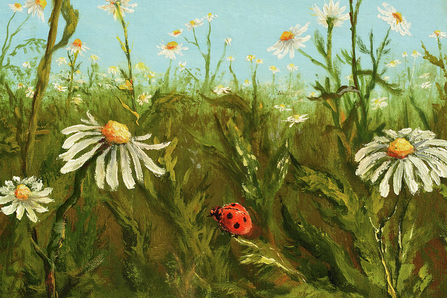 Ladybird And Camomiles Digital Art by Pobytov