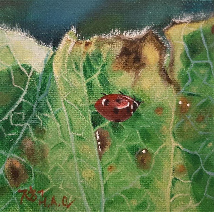 Ladybug 2 by Helian Osher