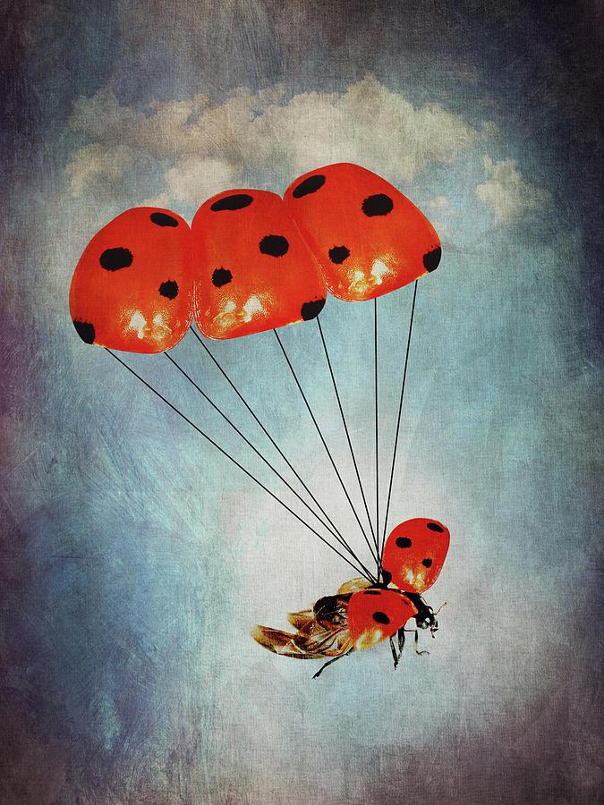 Ladybug With Parachute Digital Art