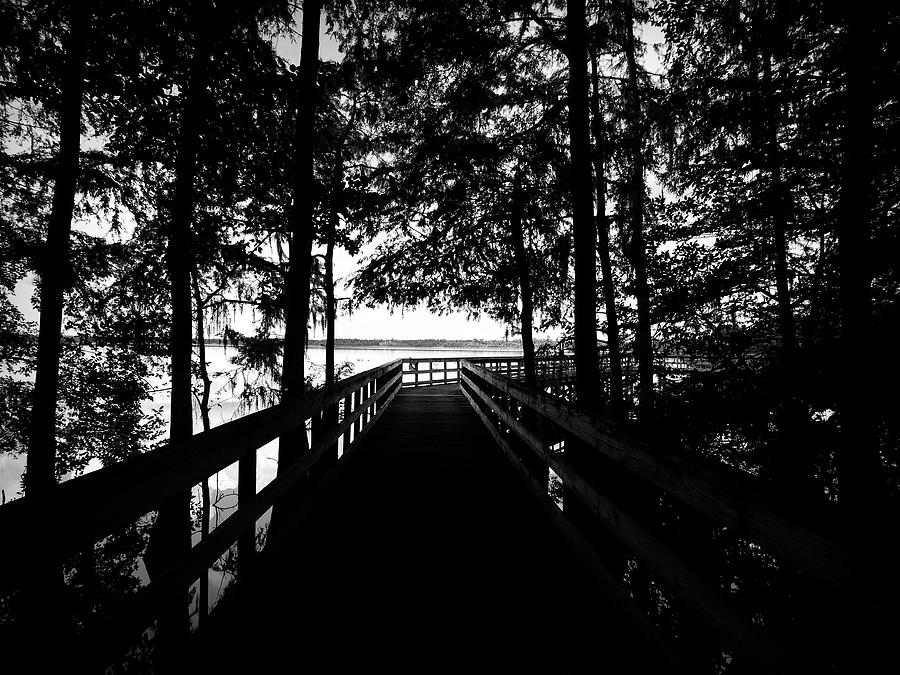 Lake Ashby Boardwalk by Robert Stanhope