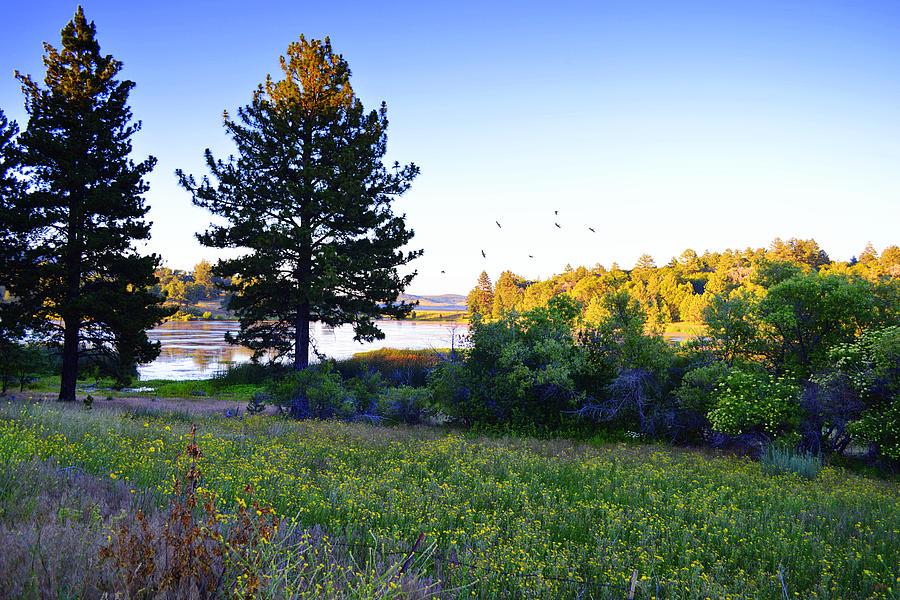 Lake Cuyamaca - California by Glenn McCarthy Art and Photography