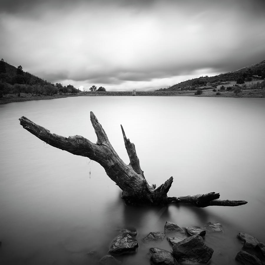 San Diego Photograph - Lake Cuyamaca Stump And Clouds by William Dunigan