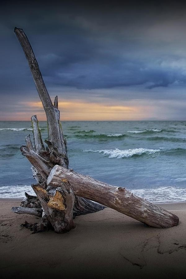 Lake Huron Sunrise on the Beach with Driftwood at Oscoda Michiga by Randall Nyhof