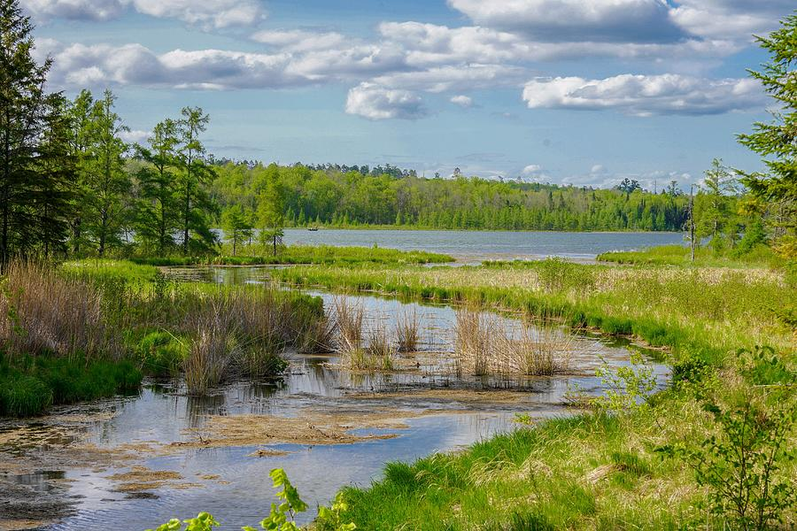 Lake Itasca Beauty by Susan Rydberg