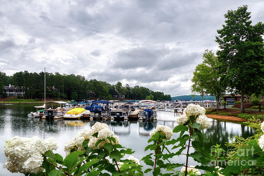Lake Photograph - Lake Keowee Flowers And Boats by Amy Dundon