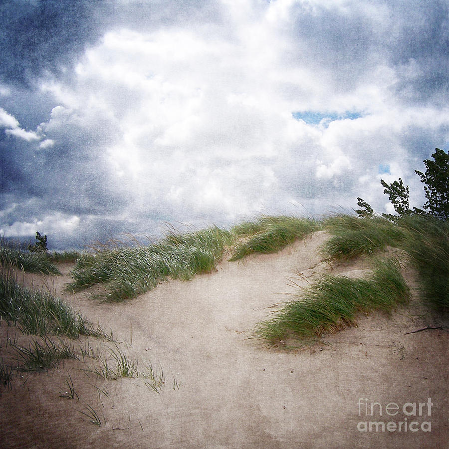Holland Photograph - Lake Michigan Sand Dunes by Phil Perkins