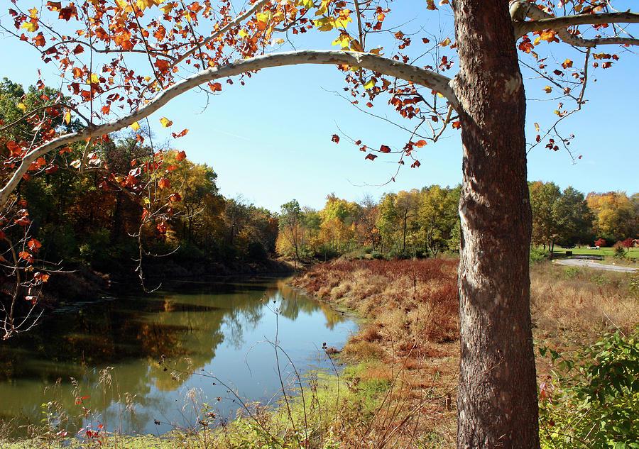 Lake Reflections Of Autumn Photograph