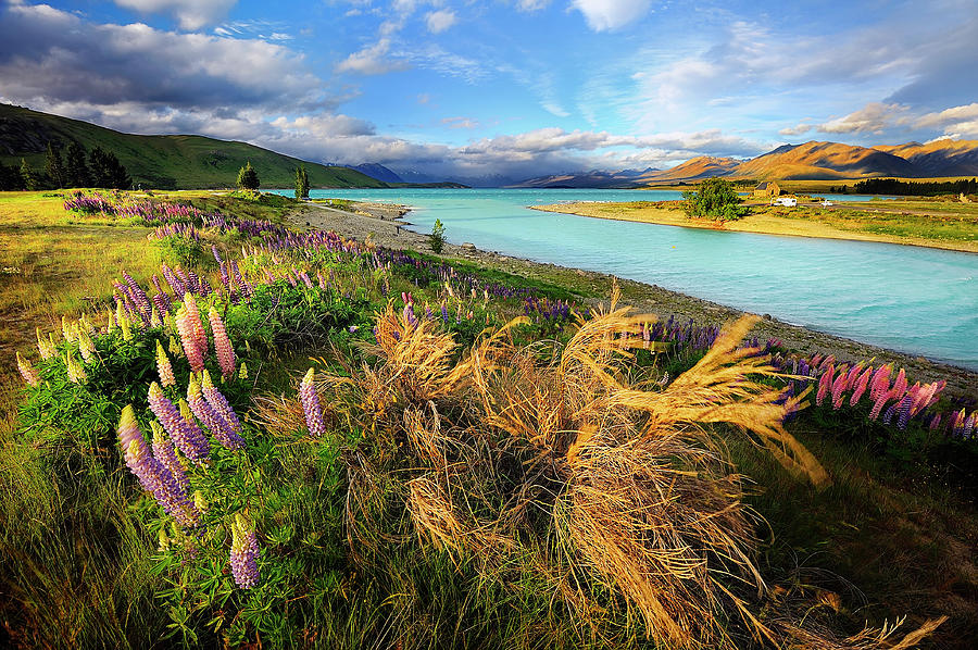 Lake Tekapo Photograph by Atomiczen