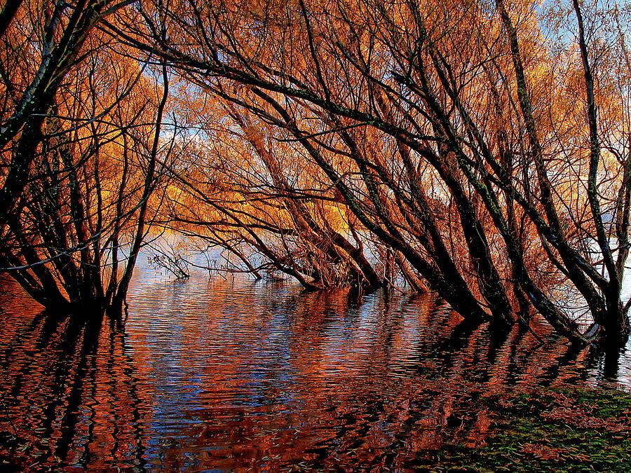 Lake Tekapo Autumn Photograph