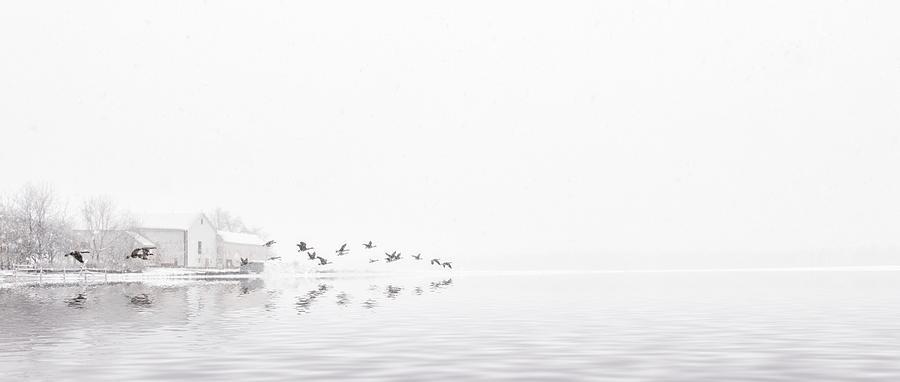 Lakeside by Mark Fuller