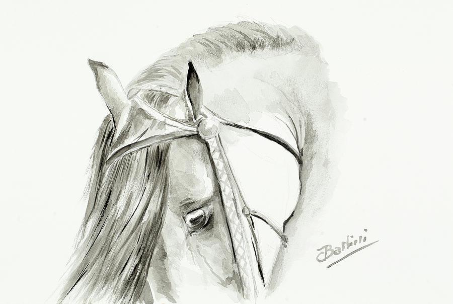 Lamina Taurina 6 by Carlos Jose Barbieri
